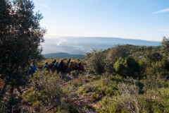 Montserrat a Hostalets de Pierola-1360398