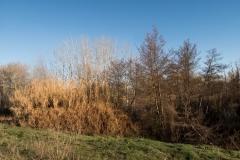 Alcoletge i Montoliu de Lleida-1