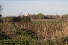 Alcoletge i Montoliu de Lleida-21
