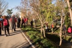 Alcoletge i Montoliu de Lleida-22