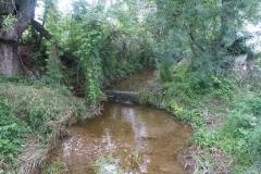Ruta de l'aigua Tarroja-IMG_0042