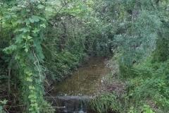 Ruta de l'aigua Tarroja-IMG_0043