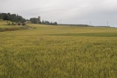 Ruta de l'aigua Tarroja-IMG_0062