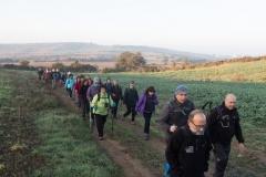Mas Farell-Camí dels Rossells-1088