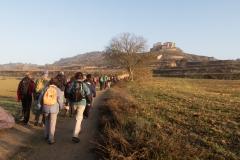 Mas Farell-Camí dels Rossells-1133