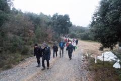Camí dels Rossells-Ogern-3086