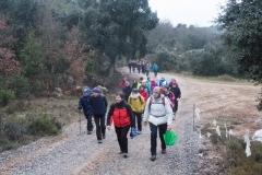 Camí dels Rossells-Ogern-3087