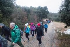 Camí dels Rossells-Ogern-3089