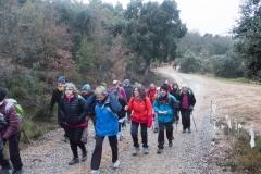 Camí dels Rossells-Ogern-3093