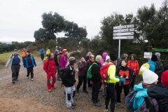Camí dels Rossells-Ogern-3102
