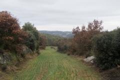 Camí dels Rossells-Ogern-3103