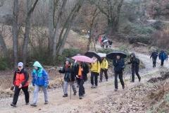 Camí dels Rossells-Ogern-3112