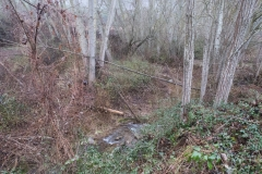 Camí dels Rossells-Ogern-3114
