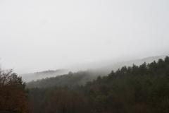 Camí dels Rossells-Ogern-3121