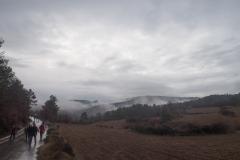 Camí dels Rossells-Ogern-3129