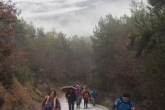 Camí dels Rossells-Ogern-3133