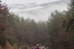 Camí dels Rossells-Ogern-3135