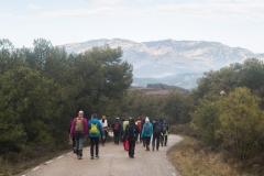 Camí dels Rossells-Ogern-3151