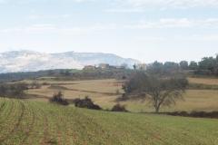Camí dels Rossells-Ogern-3153