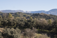 Ogern-Serra-seca-4384