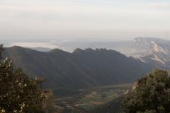 Serra-seca-a-Alinyà-5440