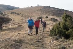 Serra-seca-a-Alinyà-5450