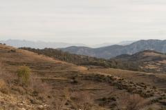 Serra-seca-a-Alinyà-5453