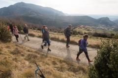 Serra-seca-a-Alinyà-5470
