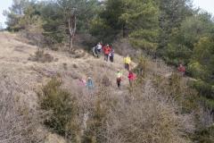 Serra-seca-a-Alinyà-5489
