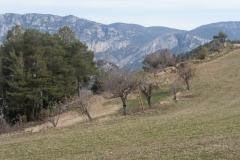 Serra-seca-a-Alinyà-5490