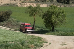 XXIX-Caminada-popular-6787