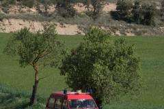 XXIX-Caminada-popular-6788