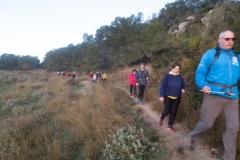 Caminada-pel-Penedés-4023