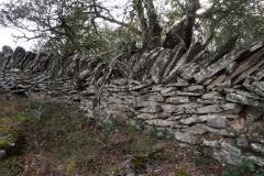 Pont de Montanyana a Tremp-1360510
