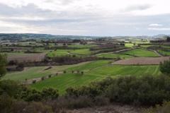 Caminada per la Segarra-1360327