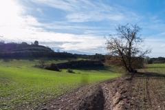 Caminada per la Segarra-1360336