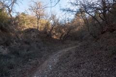 Caminada per la Segarra-1360356