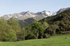 Caminada a Montgarri-9196