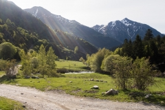 Caminada a Montgarri-9203