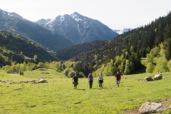 Caminada a Montgarri-9211