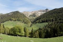 Caminada a Montgarri-9220