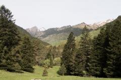 Caminada a Montgarri-9222