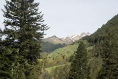 Caminada a Montgarri-9224
