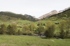Caminada a Montgarri-9229