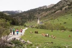 Caminada a Montgarri-9244