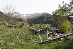 Caminada a Montgarri-9269