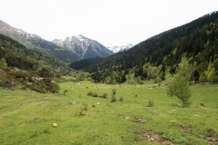 Caminada a Montgarri-9274