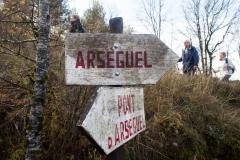 l'Hostal Nou i Arsèguel 4 etapa-5536