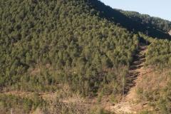 les Masies de Nargó i Gavarra-8087
