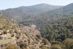 les Masies de Nargó i Gavarra-8108